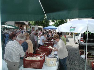 Kieferer Markt