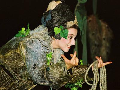 Ein kleiner Sommernachtstraum - Eine märchenhafte Feengeschichte nach William Shakespeare