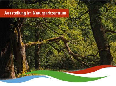 Fotoausstellung zur GartenLiebePit Faupel. (© Fotoausstellung zur GartenLiebe)