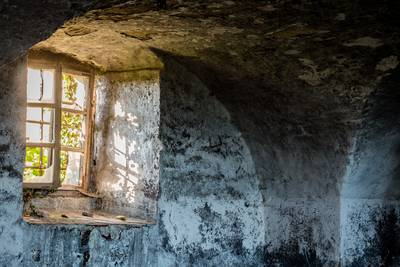 Garten- und KellergeflüsterPixabay. (© Garten- und Kellergeflüster)
