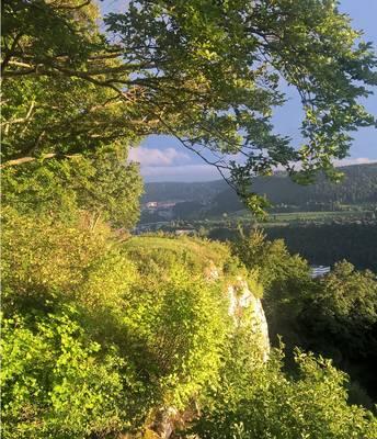 Albguide-Tour Ein Schloss, das eine Burg war und der Talgang