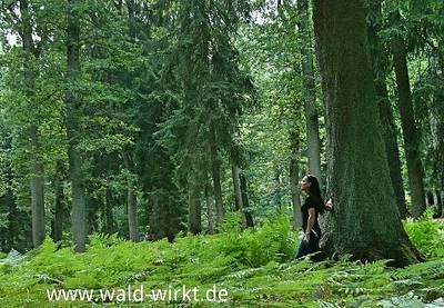 Waldbaden plus im Kurpark. (© www.wald-wirkt.de)