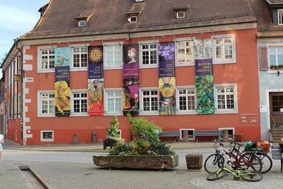 Außenansicht Blüten und Früchte. (© Kultur- und Tourismus GmbH Gengenbach)