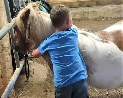 Pony Erlebnis Nachmittag. (© Oelehofakademie)
