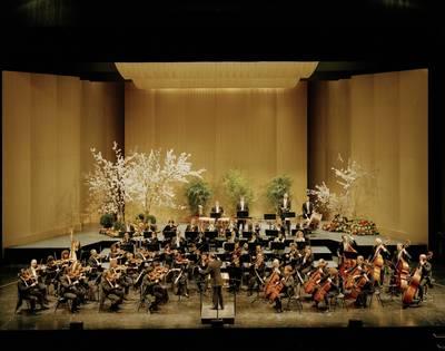 Interner Link zur Veranstaltung: Nagolder Konzertreihe - Sinfoniekonzert