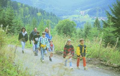 Interner Link zur Veranstaltung: Lebensgemeinschaft Wald