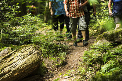Gefhrte Wanderung Einmal durch das Monbachtal
