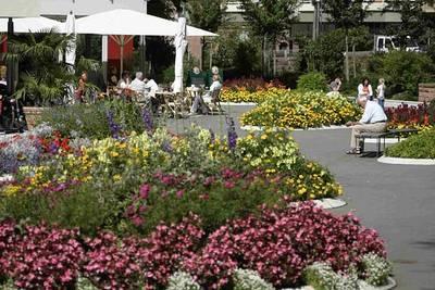 Interner Link zur Veranstaltung: Flohmarkt im Kurpark