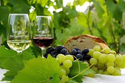 Weindegustation mit erlesenen Weinen unter fachkundiger Leitung mit der Winzergenossenschaft Britzingen eG