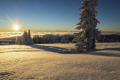 Sonnenaufgang Schneeschuhwanderung. (© Hochschwarzwald Tourismus GmbH)