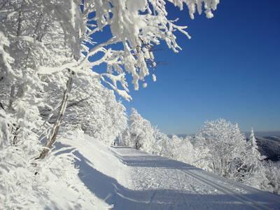 Unterwegs auf dem Panoramaweg  gefhrte Winterwanderung durch das Bernauer Hochtal