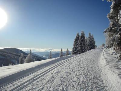 Auf dem Dach des Schwarzwalds  gefhrte Winterwanderung am Feldberg