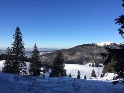 Im Herzen des Südschwarzwalds  geführte Schneeschuhwanderung auf das Herzogenhorn