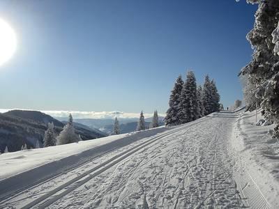Auf dem Dach des Schwarzwalds  geführte Winterwanderung am Feldberg