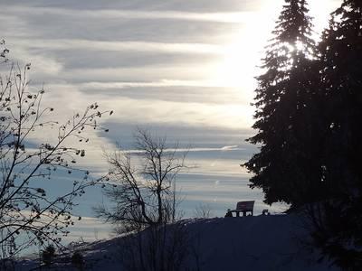 Hoch über dem Dreisamtal  geführte Winterwanderung bei St. Peter