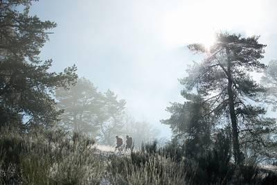 Morgenstimmung im Winter. (© Rothaarsteigverein e.V.K.-P. Kappest)
