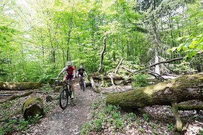 Mountainbike auf der PUR