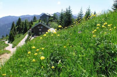 45. Pürschling-Berglauf Unterammergau 2020