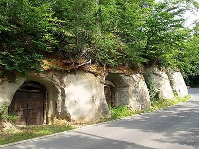 Felsenkeller Uhldingen-Mühlhofen. (© Bernhard Blumenstein, Tourist-Information Uhldingen-Mühlhofen )