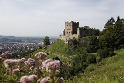 Oberkircher Weinwanderung