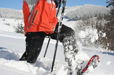 Wandern mit Schneeschuhen um Breitnau. (© Bergwelt Südschwarzwald)