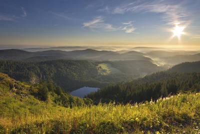 Feldseewanderung. (© Hochschwarzwald Tourismus GmbH)