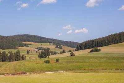 Blick ins Langordnachtal. (© Hochschwarzwald Tourismus GmbH)