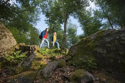 geführte Wanderung auf dem Felsenweg ENTFÄLLT!. (© Klaus Peter Kappest  Wanderbüro Saar-Hunsrück)
