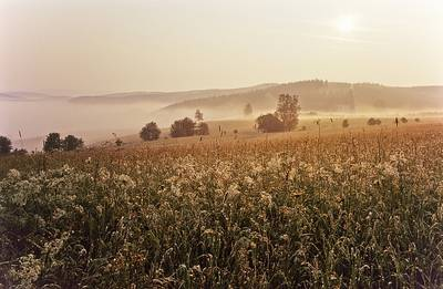 Morgenstimmung im Sommer. (© Rothaarsteigverein e.V. K.-P. Kappest)