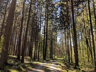 Genusswanderung durchs Schambachtal