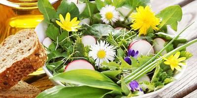 Immenstaad blüht auf! Essbare Garten- und Wildkräuter und ihre Verwendung für unseren Genuss