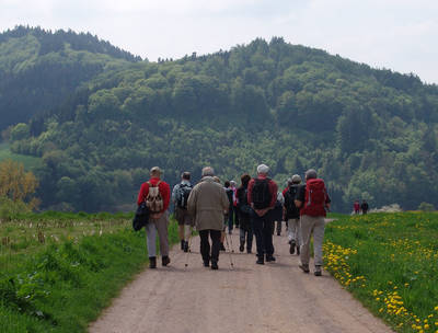 ABGESAGT - Grunern Rundweg. (© Schwarzwaldverein St. Märgen)