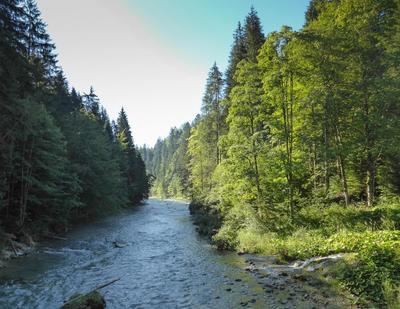 Naturjuwel Ammerschlucht - der Grand Canyon im Naturpark Ammergauer Alpen