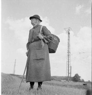Die Blumenfrauen vom Viktualienmarkt. Fotoarbeiten von Hildegard Kaup 1924-2016