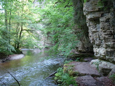 Der Schwarzwald-Canyon  geführte Wanderung in der Wutachschlucht. (© Dr. Jochen Schwendemann)