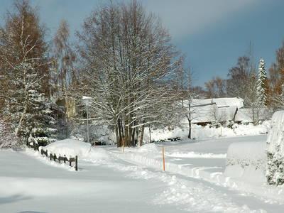Geführte Schwarzwald-Wanderung: abgesagt