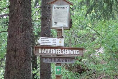 Auf dem Weg zum Urwald - Bannwald Schwarzahalden: abgesagt
