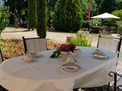 Sammeltassen-Café in der Hilfinger-Mühle