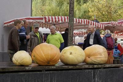 Bauernmarkt mit Kürbisprämierung