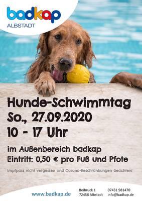 Hunde-Schwimmtag