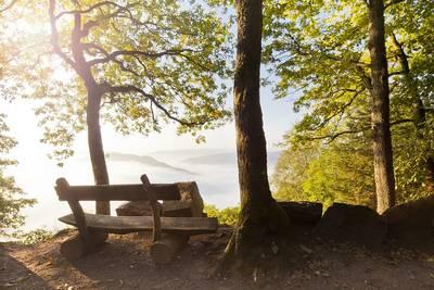 EWS-Schnupperwanderung: Römische Steinbrüche und Brandgräber im Tal der Eichen. (© Eike Dubois)