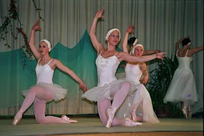 ABGESAGT - Frhlingsfest des Elztler Ballett- und Turnverein