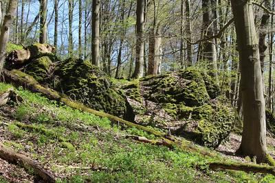 Die Altenburg  Im Land der Chatten