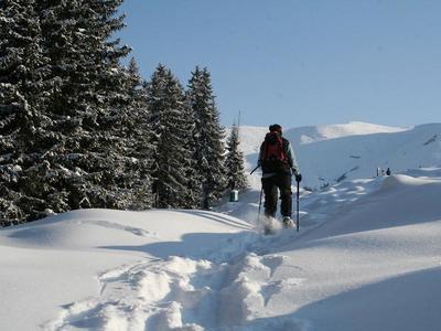 Schneeschuhwanderung auf unbekannten Pfaden in Brigels