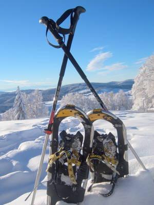 Schneeschuh-Panoramawanderung am Schauinsland