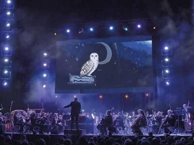 Wohnzimmerkonzert: The Music of Harry Potter