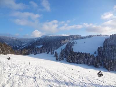!!! A B G E S A G T !!!  Von hinten auf den Höchsten ?? geführte Schneeschuhwanderung auf den Feldberg