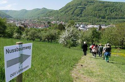 Baumpflanzkurs am Nussbaumweg - OGV Lichtenstein