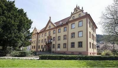 Elztalmuseum - Regionalgeschichte und Orgelbau