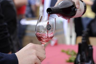 Dégustation estivale au village viticole de Salquenen